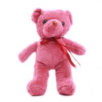 Toy Baby Soft Doll Teddy M - Colour may varies