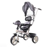Ez Baby Tricycle with Parental push handle&Canopy 688-Gray